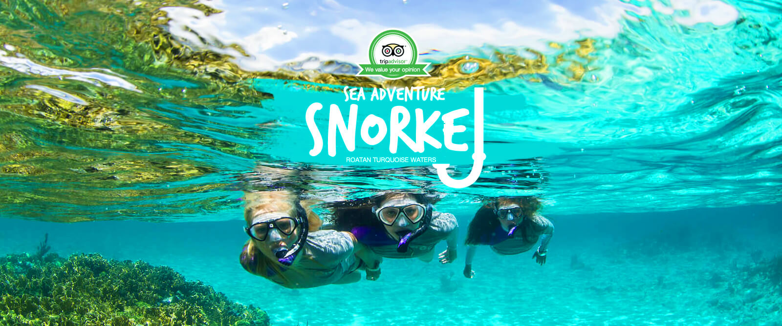 Snorkel & West Bay Beach Excursions Tours