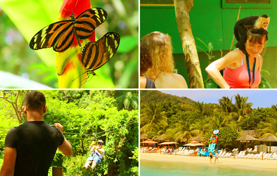 Zipline, Monkey Park, Botanical Garden & West Bay Beach Tour